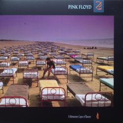 PINK FLOYD A MOMENTARY LAPSE OF A REASON Виниловая пластинка