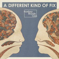 BOMBAY BICYCLE CLUB A DIFFERENT KIND OF FIX Виниловая пластинка