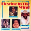 Blowing In The Wind - 16 Original Superhits Of The 60's
