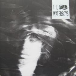 The Waterboys The Waterboys Виниловая пластинка